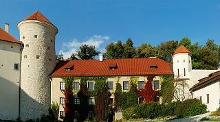 castle-1711125_640